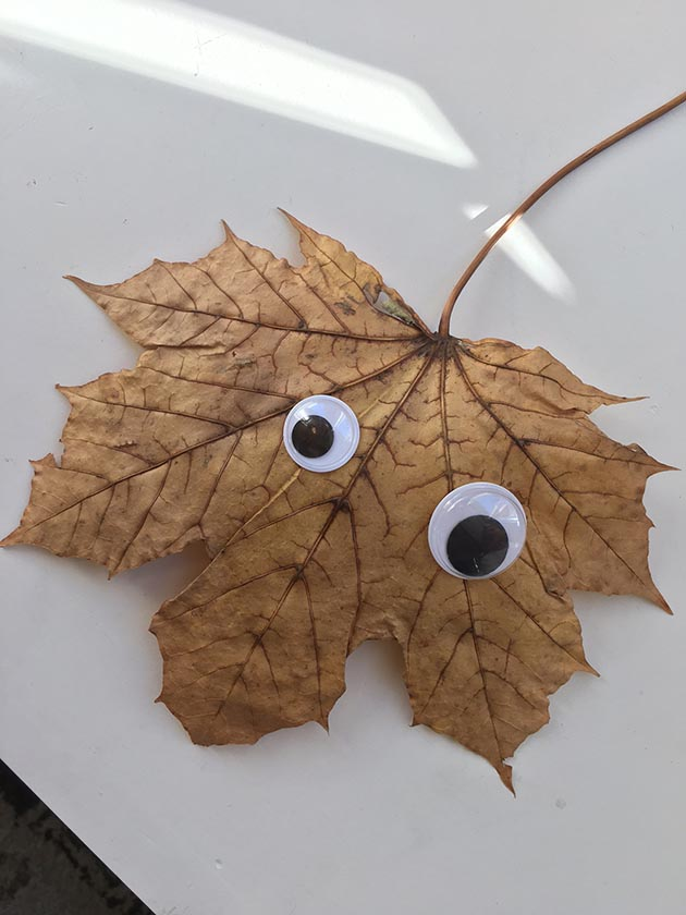 The Grandycamp blog shares ideas for crafts such as adding googly eyes to everything, dinosaur-themed projects, cute potty-training squares and pipe-cleaner/colander art.