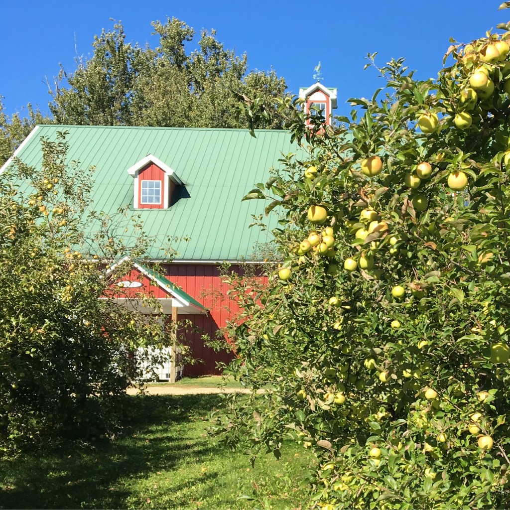 Maiden Rock Apples, Winery & Cidery